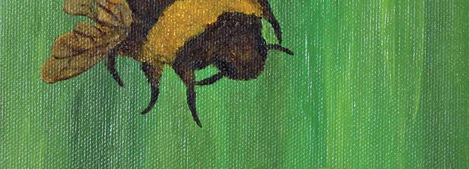 Bee and Daisy.jpg
