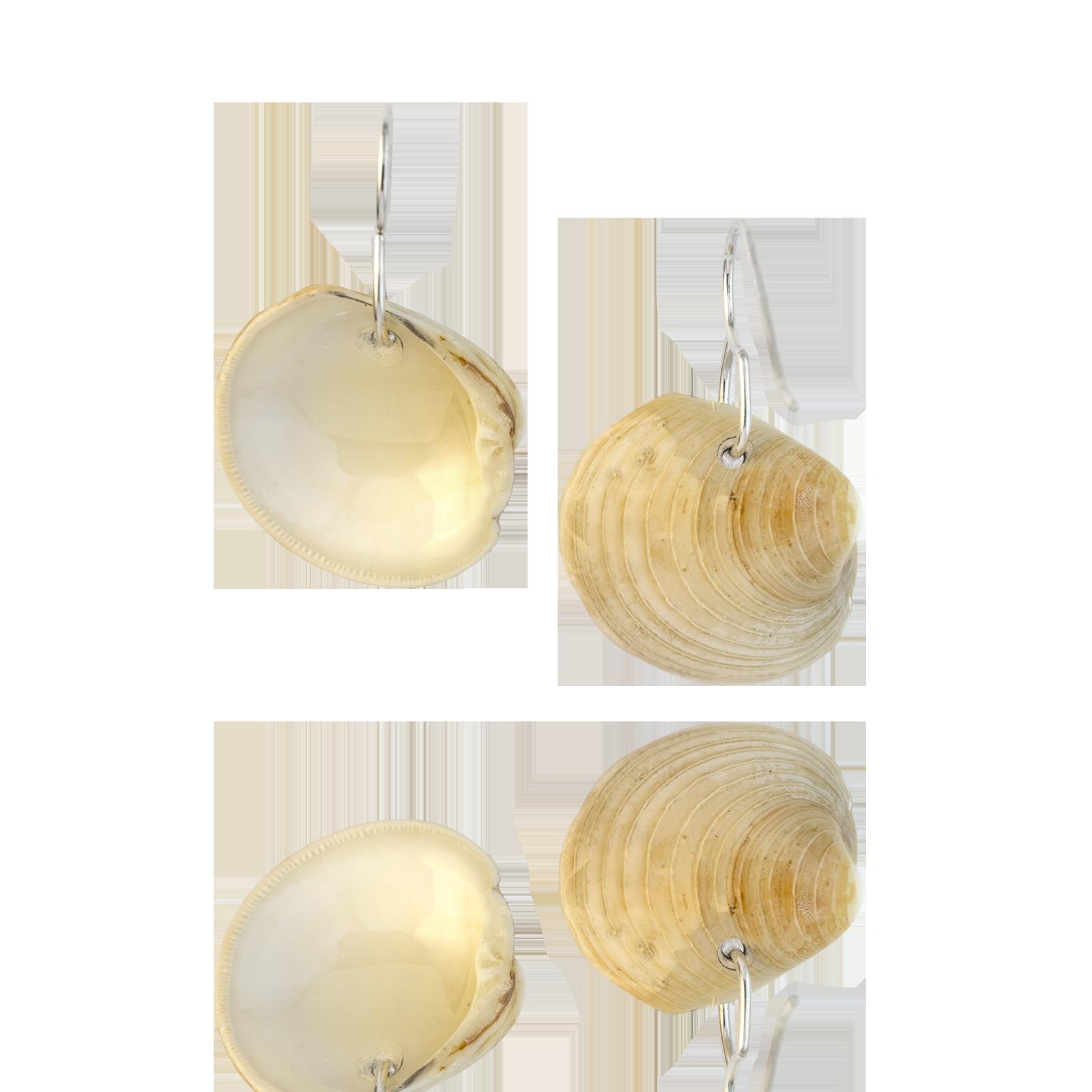 Clam Dangles Natural Backs