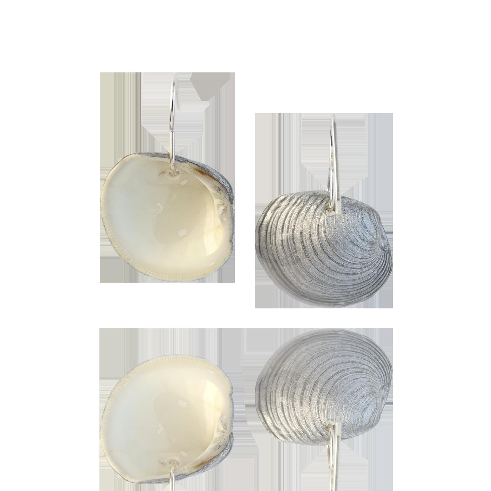 Clam Dangles Silver Backs