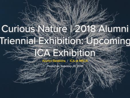 The Institute of Contemporary Art at Maine College of Art  Curious Nature   2018 Alumni Triennial