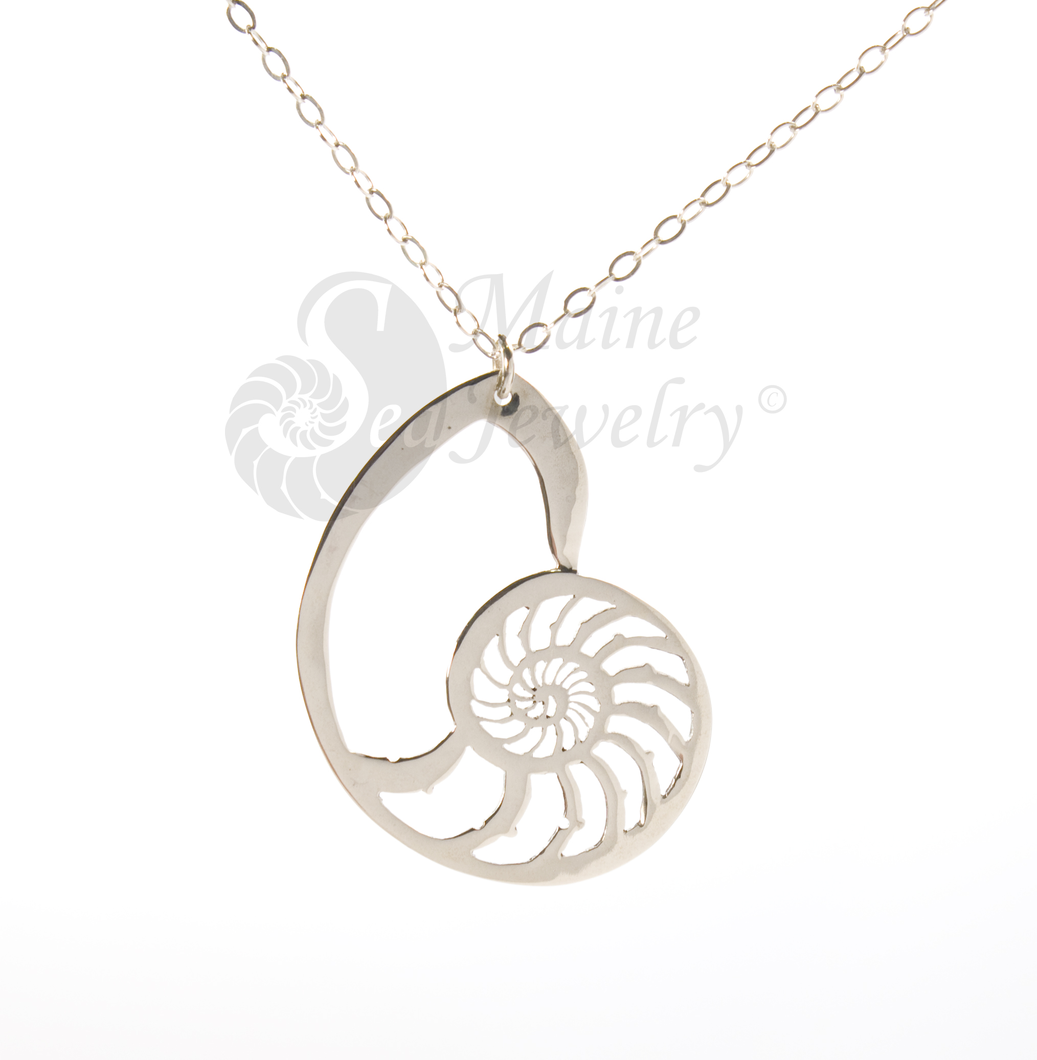 Pierced Silver Nautilus