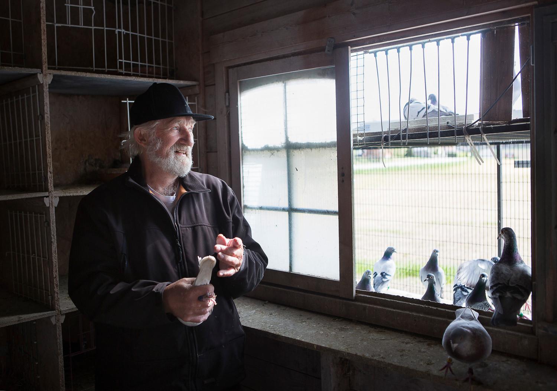 Lennart och hans duvor