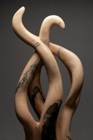 Twisted Limbs (SOLD)