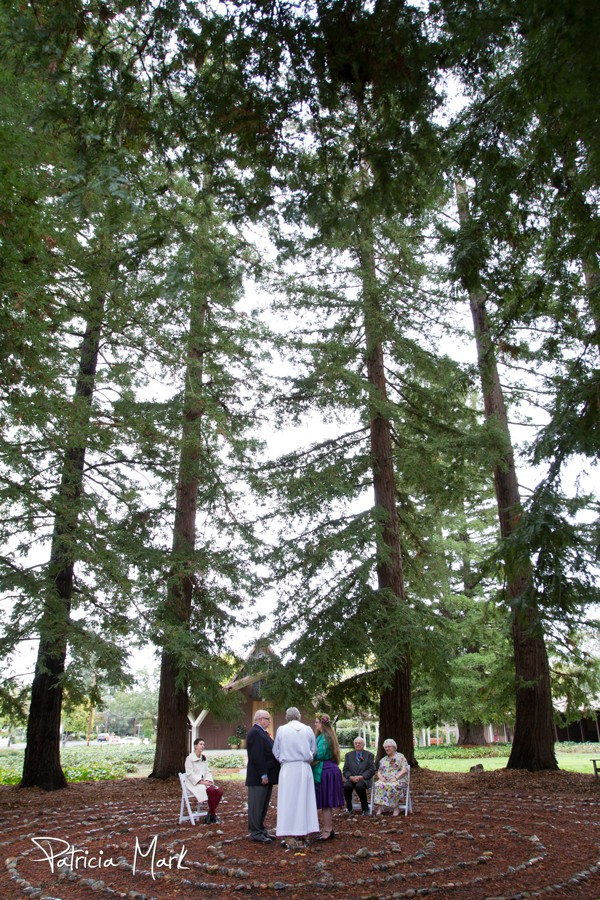 Redwood Grove Small Wedding