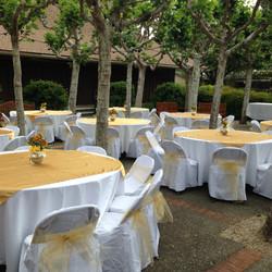 Abbott Courtyard Reception