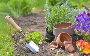 shovel-planted-soil-garden-flowerpots_ed