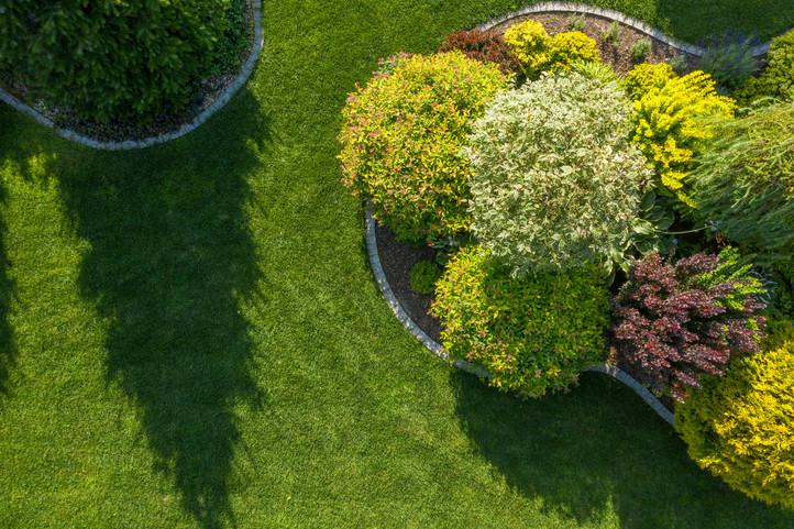 residential-backyard-garden-aerial-vista