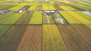 Aerial photo from flying drone of farm b