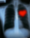 Heart in the ribcage.png