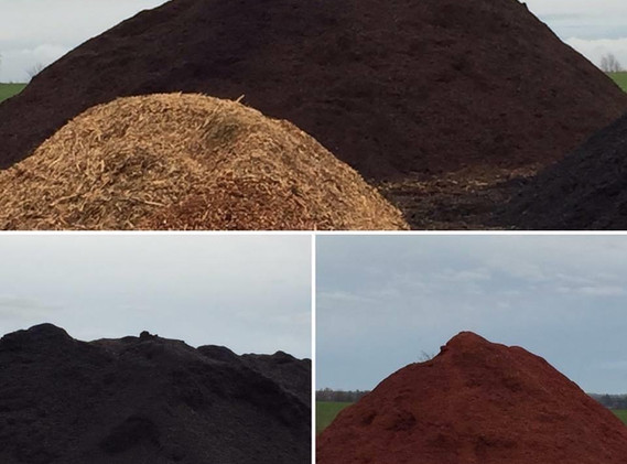 Landons mulch varieties.JPG