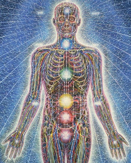Acupuncture Meridians, Blood Vessels, Nerves (Art by Alex Grey)