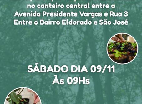 Faculdade Fibra participa de ação de plantio de árvores em Anápolis