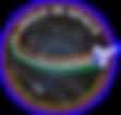 IIS new logo.png