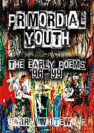 PRIMORDIAL YOUTH COV A5 FINAL.jpg