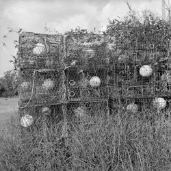 """""""Crab Traps, Highway 90, New Orleans East"""""""