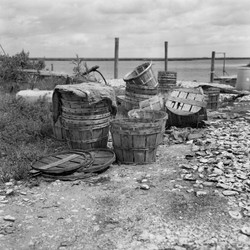 """Oyster Buckets, Irish Bayou, New Orleans East"""
