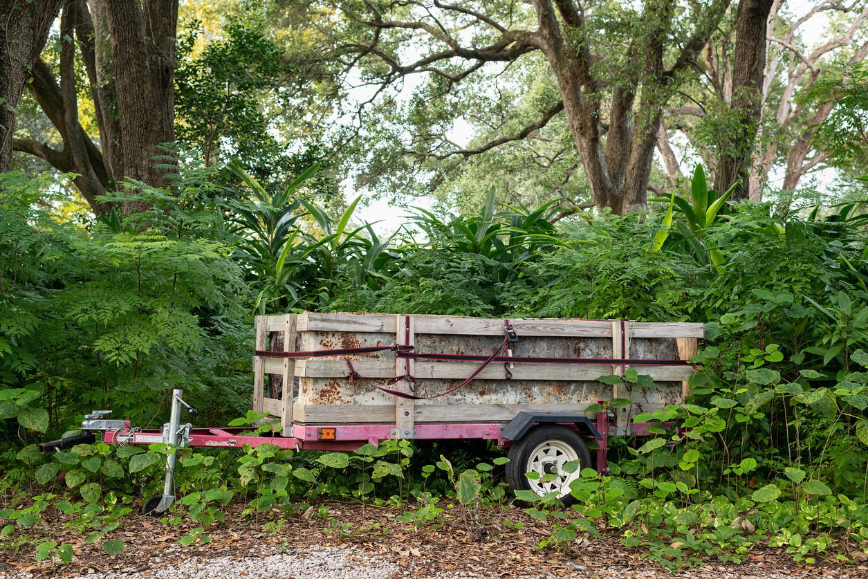 Pink Trailer, Audubon Park, New Orleans