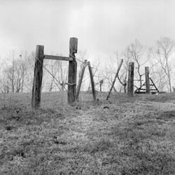 """""""Levee Fence, River Road"""""""