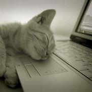 Ordinateur et sommeil