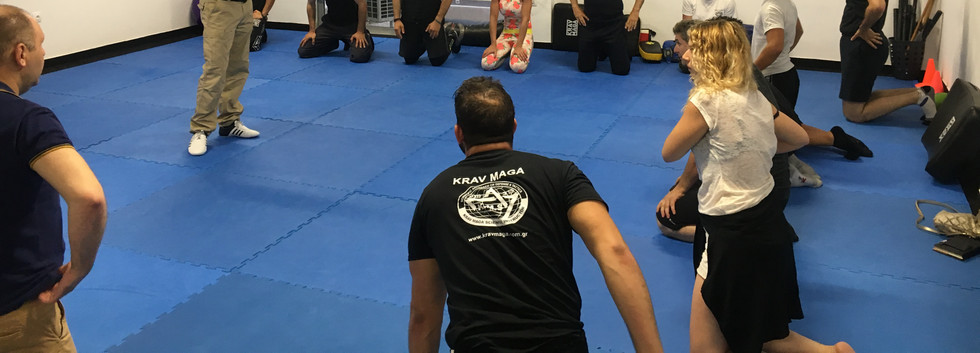 krav maga science, assistant instructor