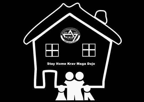 stay home krav maga dojo.png