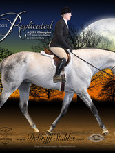 Poster-36x42 DGSR Trot Right #6-1000.jpg