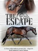 The Only Escape verticle-Single-1000.jpg