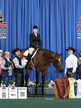 11-18 AQHA WS Top5and10-SRP_2527-R.jpg