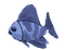 Maynard: Fish