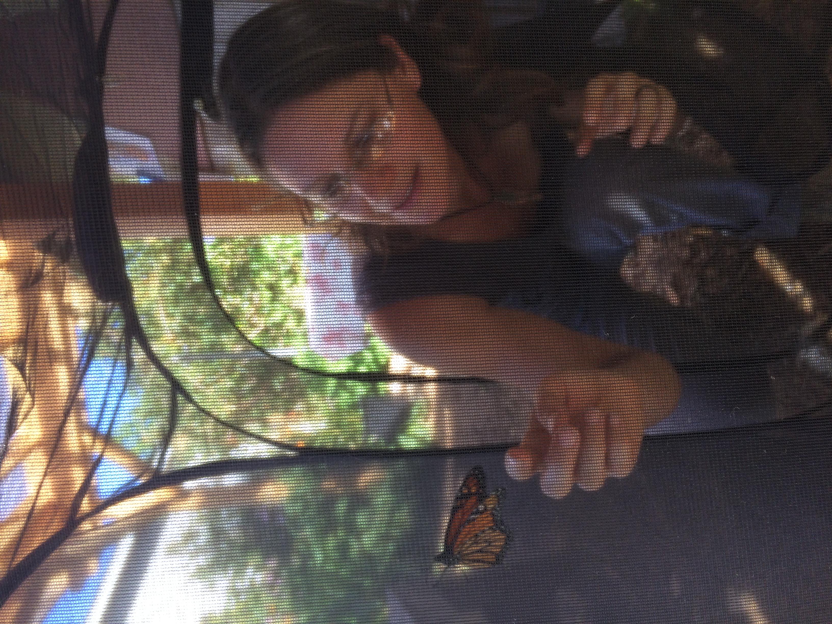 Tagging Monarchs 1