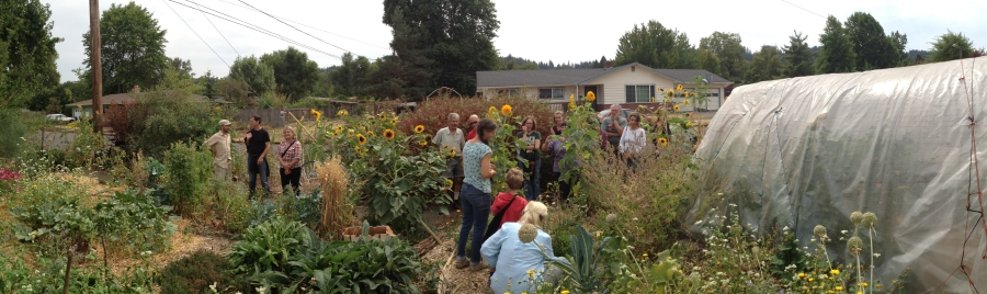 permaculture tour of Matt & Jess's, 8-28-15
