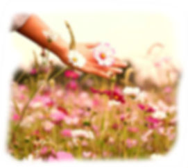campo floral.jpg