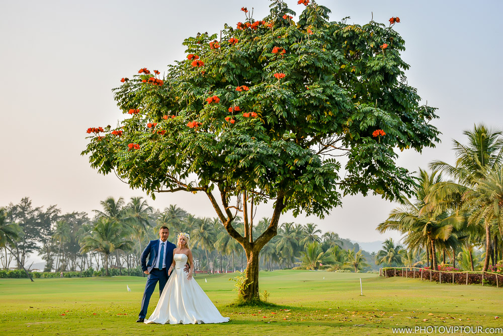 Фотограф в Гоа. Свадьба в Гоа