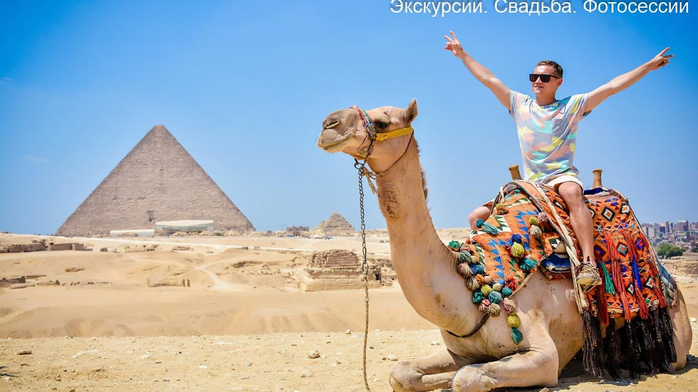 Заказать экскурсию в Каир на автобусе из Шарм эль Шейха цена. Экскурсии в Шарме. Экскурсия на пирамиды. Египет