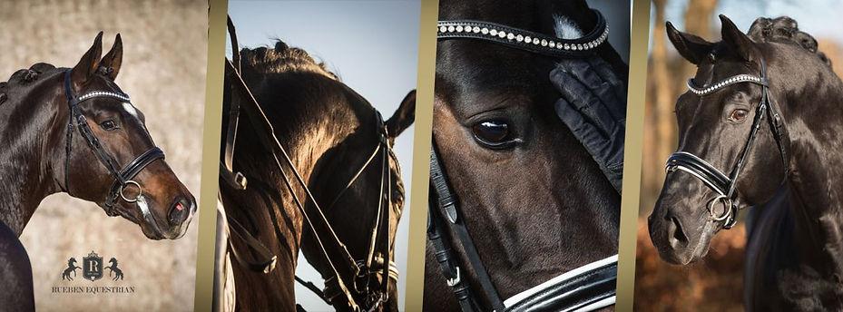 Nadine Harms Pferdefotografie Berlin Brandenburg Deutschland