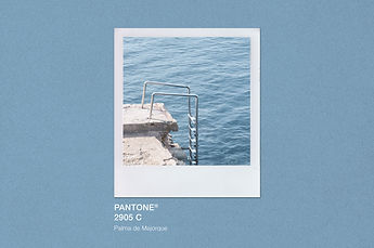 Palma_PANTONE-texture.jpg