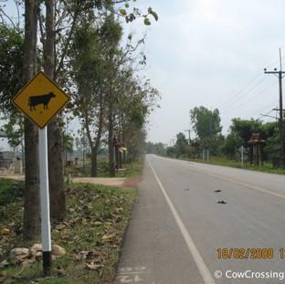 Suwasa Phayoa Province. Photo: Jacques Brisson
