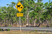 Cairns to Cooktown, Queensland, Australia. Photo: The Founding Group