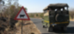 Car in South Africa next to Cow Crossing Sign
