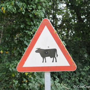 Falgons, Girona. Photo: Pep Canadell
