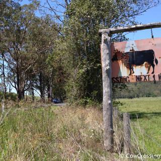 Barrington Tops, NSW. Photo: Pep Canadell