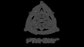 PTK-SMF_Triangle_video%20watermark_white