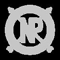 NP-logo-White.png