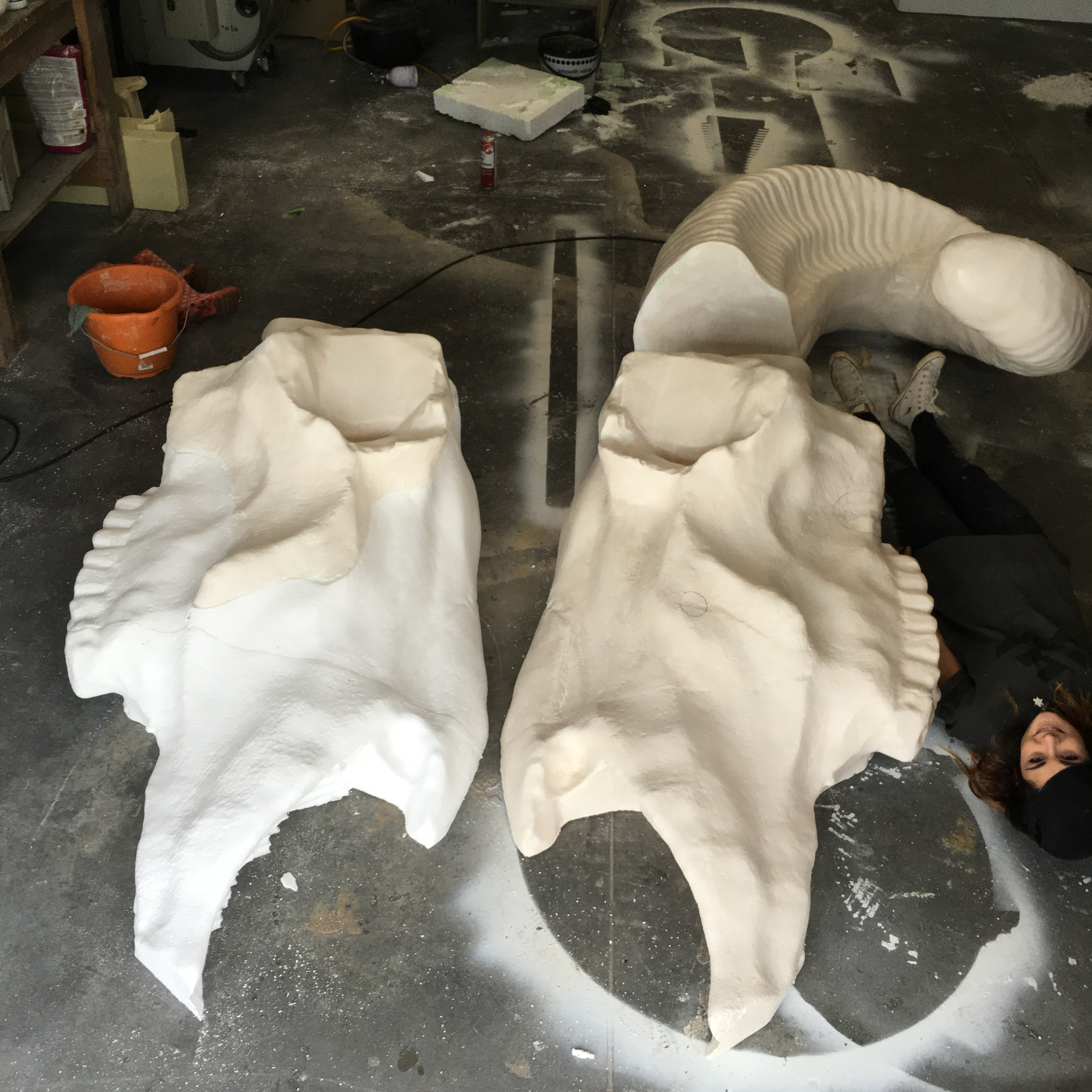 Giant ram skull 2