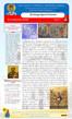 Boletín, Domingo 13 después de Pentecostés
