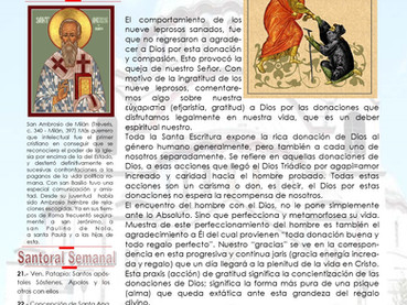 Boletín, Domingo 28 después de Pentecostés