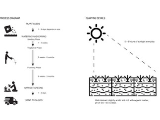 Planting and Harvesting Processes