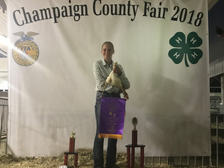 Grace Forrest, Grand Champion, Champaign County Fair, OH