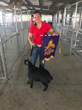 Stacey Thompson, Grand Champion Delaware