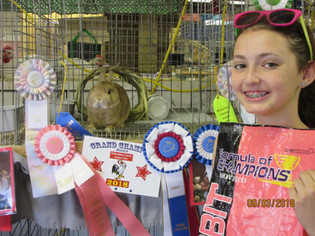 Emily Martin, Grand Champion, Canfield Fair, OH